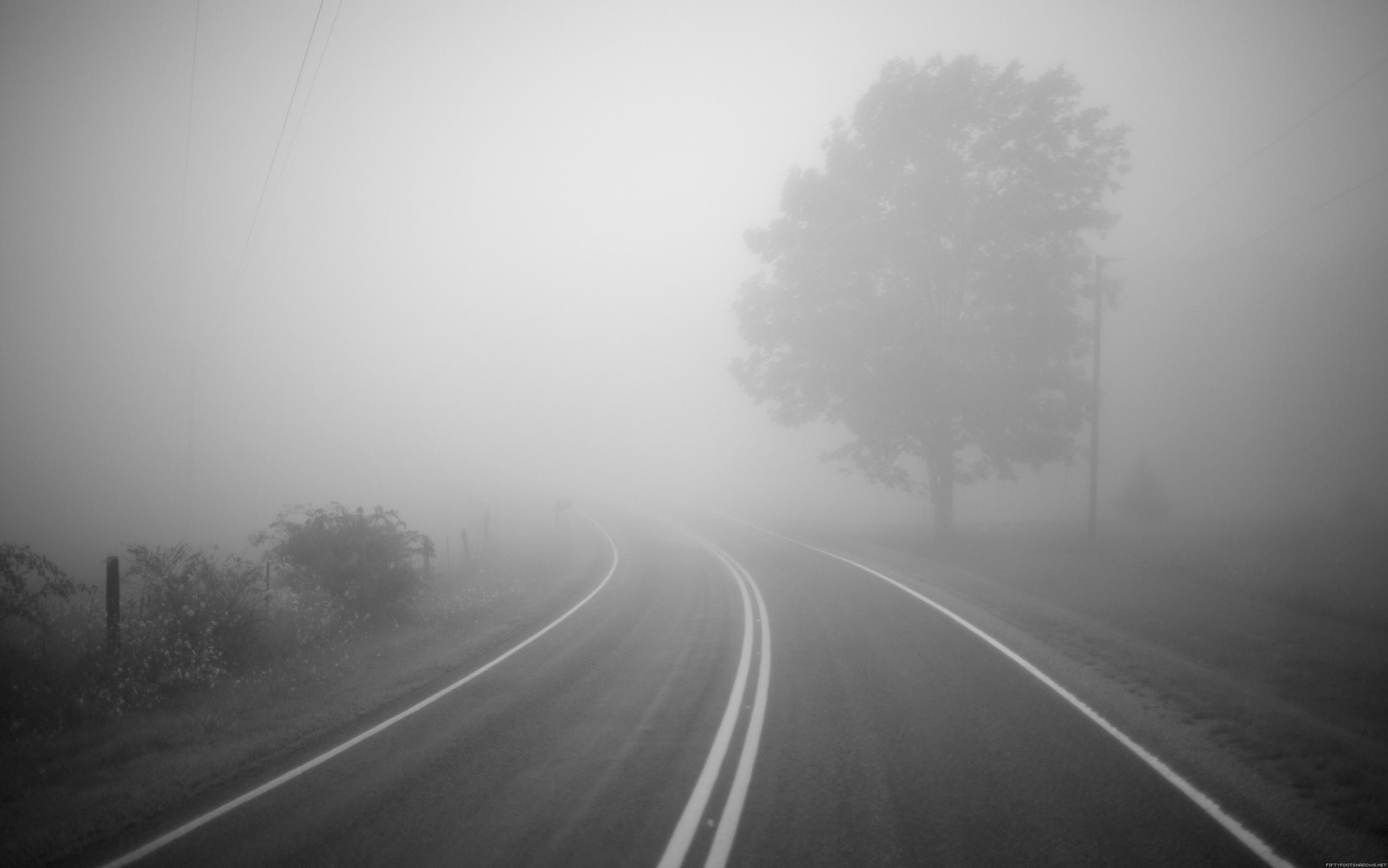 Туман и дождь. Советы по вождению