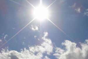 Предупреждение от экспертов: как ездить в жару